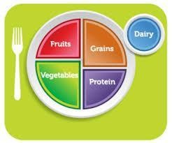 portioned dinner plate graphic